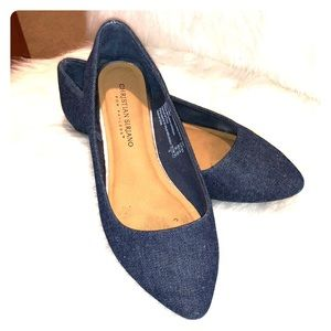 Denim Chambray Pointed Toe Flat